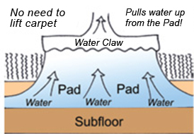 water claw diagram