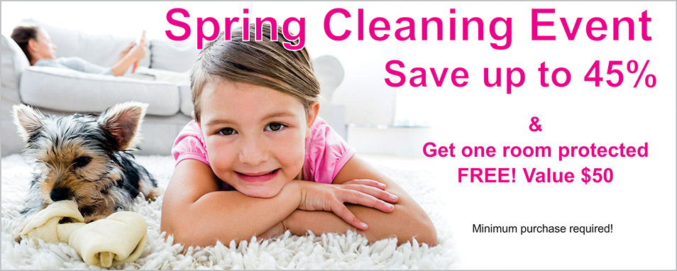 Spring Carpet Cleaning Event